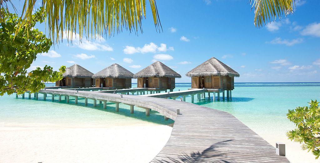 Hôtel de luxe 5 étoiles aux Maldives