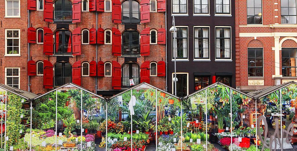 Ses canaux, ses rues, ses musées, ses monuments, son marché aux fleurs...