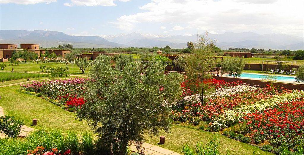 Pour que vous puissiez profiter en toute sérénité de votre séjour, entre paysages merveilleux...