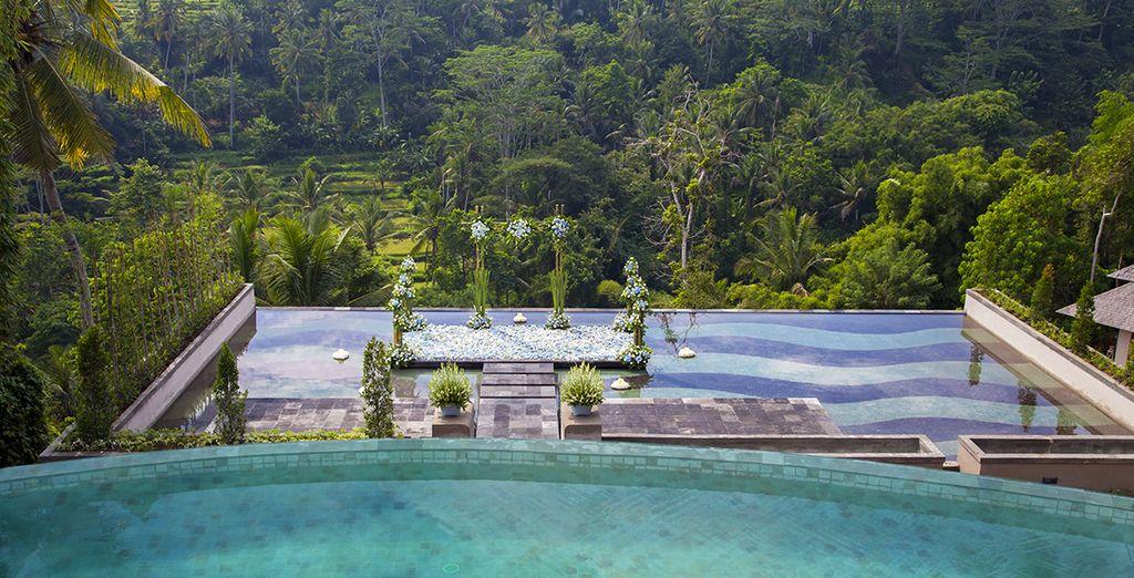 Tout commence dans l'écrin luxuriant du Jannata Resort