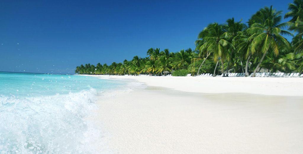 Rêvez en Jamaïque !