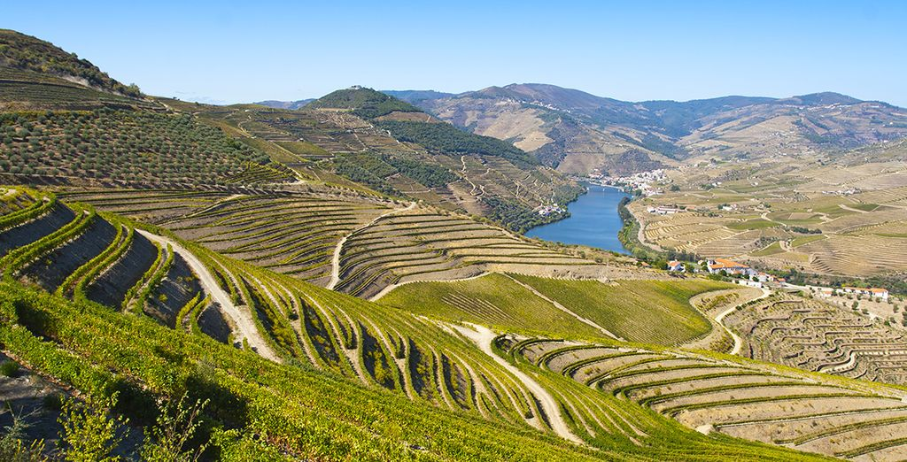Vous découvrirez la vallée du Douro...