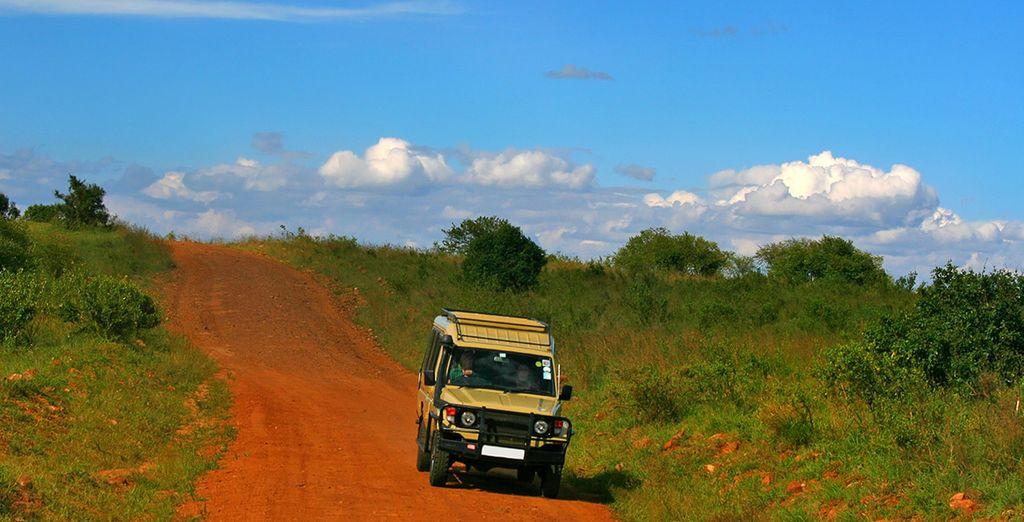 Avant de partir à l'intérieur des terres en Safari d'1 ou 3 nuits