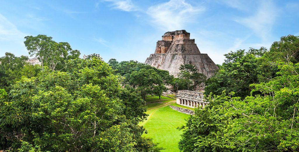 Vous rêviez d'un extraordinaire voyage ? - Vestiges Mayas et haciendas en circuit privatif Cancun