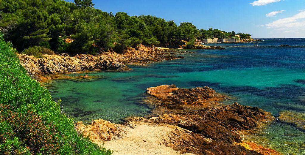 Envie de vacances en Méditerranée ?