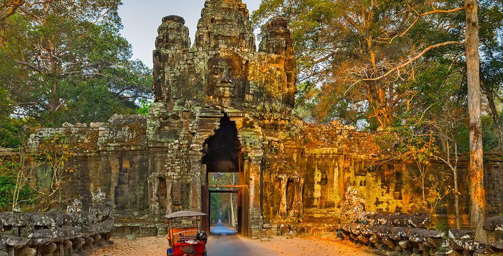Explorez des temples enfouis dans la jungle