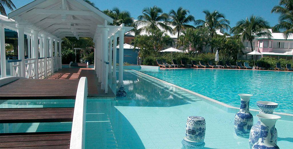 Dans un environnement paradisiaque... - Hôtel La Cocoteraie  Pointe-à-Pitre