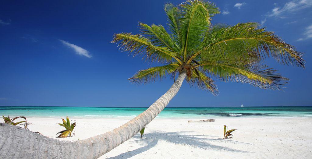 Sur la superbe Riviera Maya aux plages de rêve...