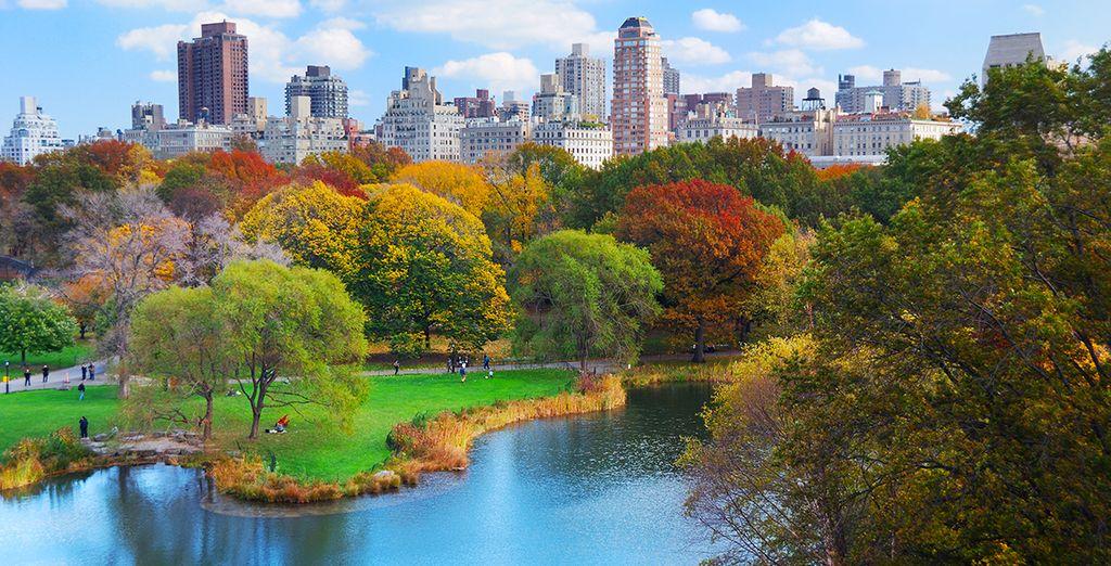 Central Park n'est qu'à quelques pas...