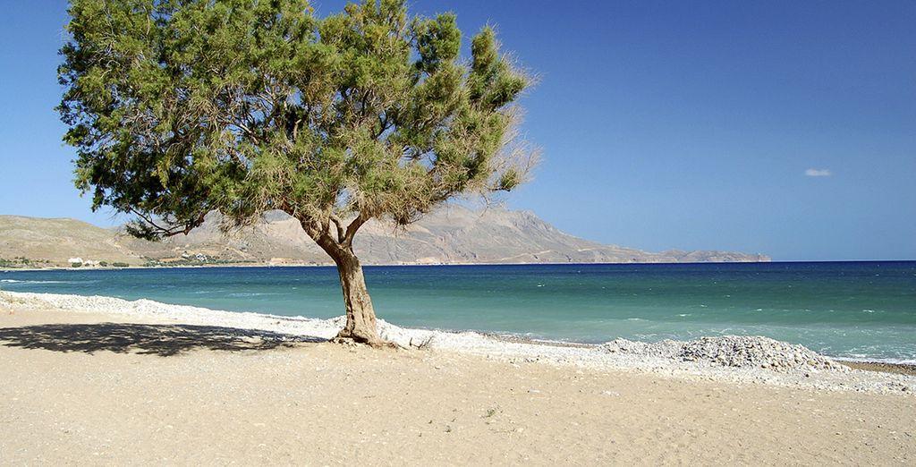 Laissez-vous tenter par une escapade à la plage