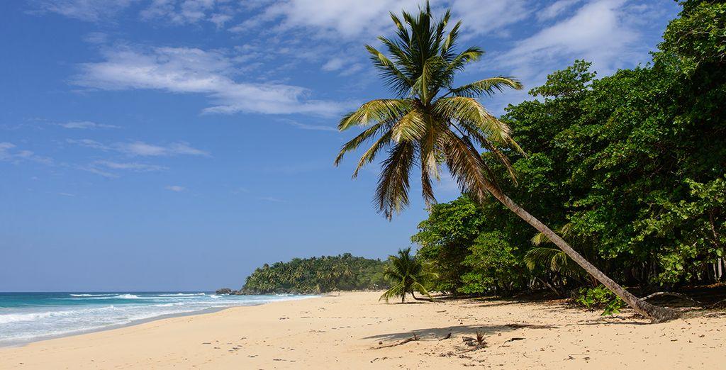 Bon séjour en République Dominicaine !