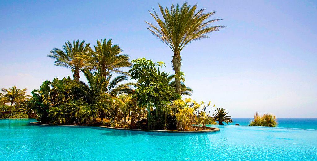 Bienvenue au Pajara Beach où se confondent les nuances de bleu... - Hôtel Pajara Beach 4* Costa Calma