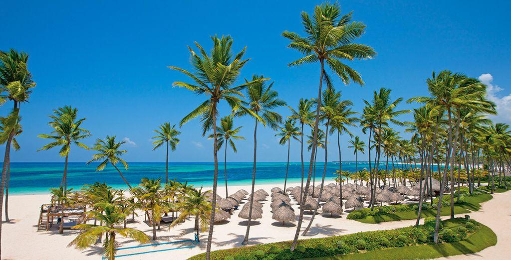 Vous vous voyez déjà les pieds dans le sable chaud face à cette mer turquoise ? - Hôtel Secrets Royal Beach Punta Cana 5* Punta Cana