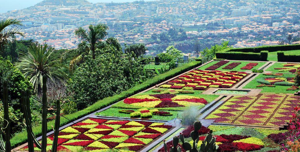 Et de ses jardins aux mille couleurs