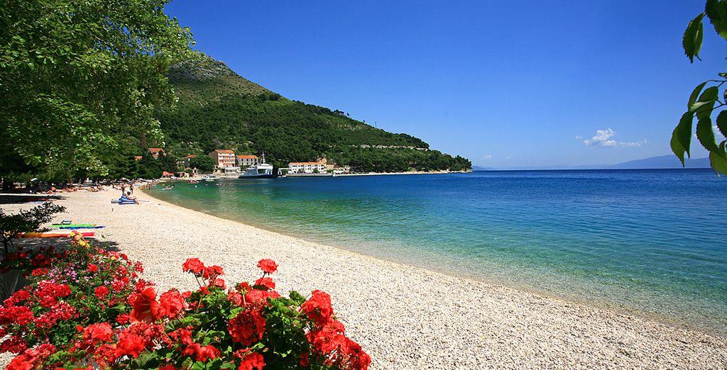 Et atterrissez sur les plages de Drvenik, où le Top Clubs Quercus vous accueille
