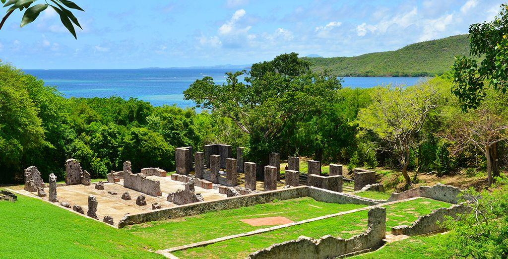 Presqu'île de la Caravelle et vue panoramique sur l'océan Atlantique
