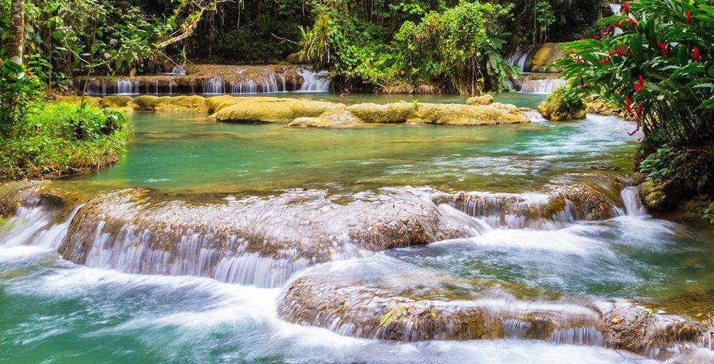 Et explorer la Jamaïque