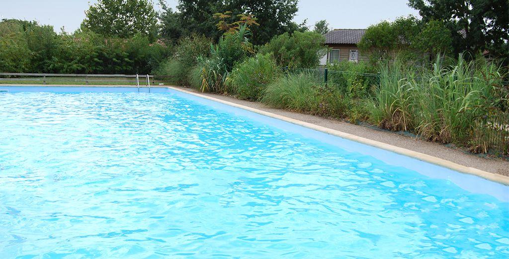 Ainsi qu'une grande piscine !
