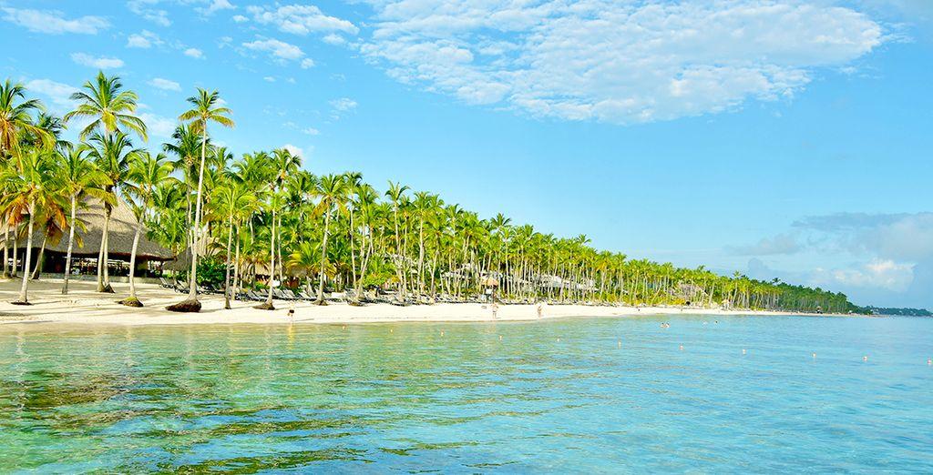 Vous vous voyez déjà fouler le sable fin d'une des plus belles plages de Punta Cana ? - Hôtel Barcelo Bavaro Palace 5* Punta Cana