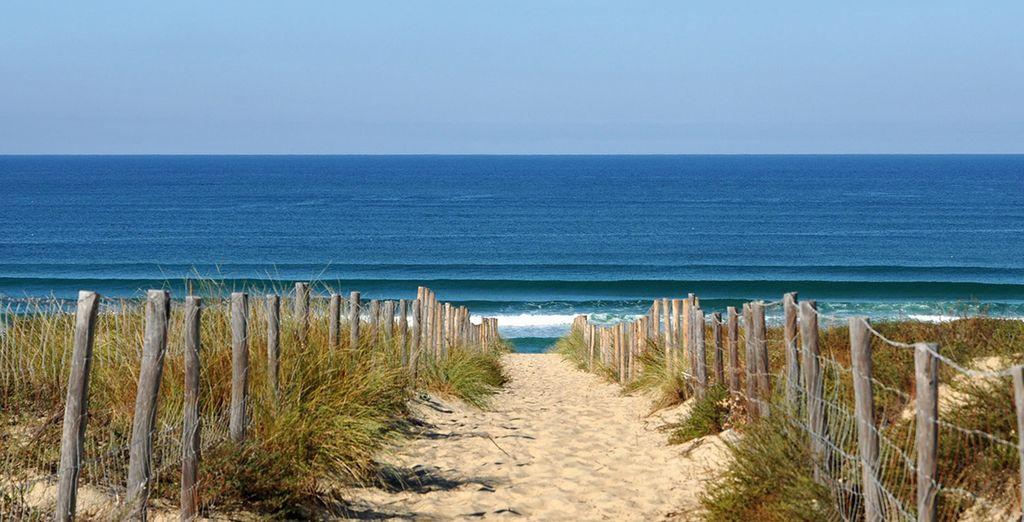 Appréciez vos journées en vous promenant le long des plages landaises