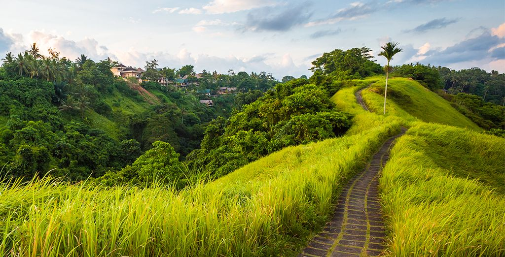 Votre découverte commence par la région d'Ubud