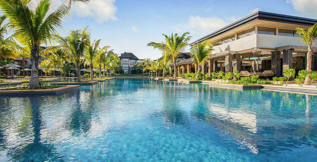 Plongez dans les eaux bleues de la piscine principale...