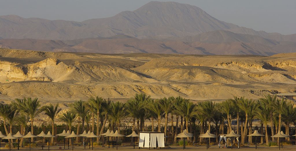 Dans cette fascinante région qu'est Marsa Alam, entre mer et désert