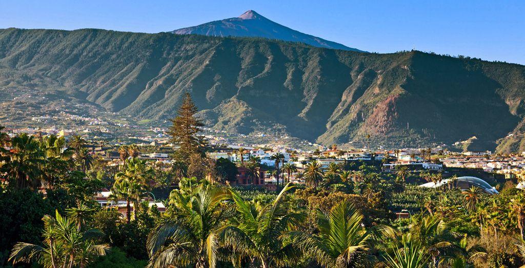 Direction Tenerife !