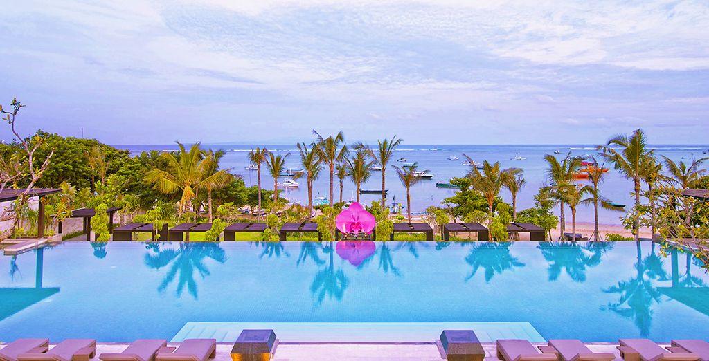Entre mer, piscine & jardins tropicaux !