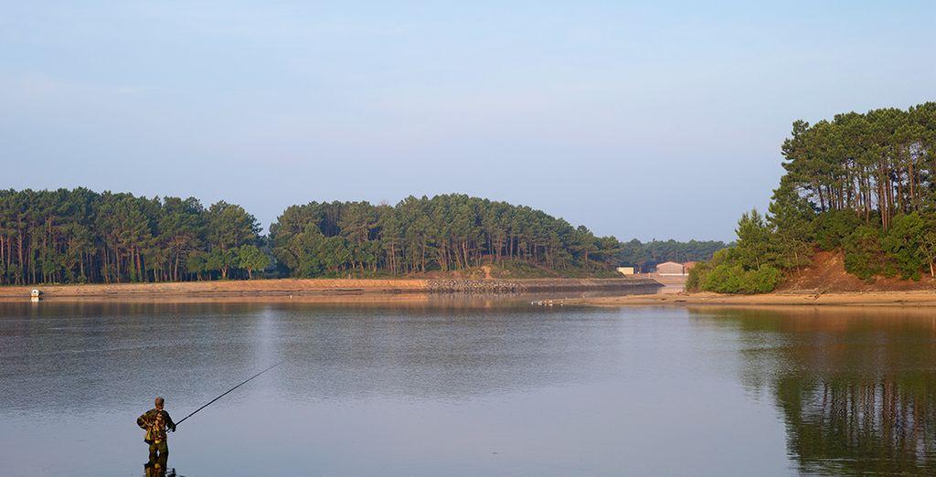 Et vous adonner à des activités telles que la pêche dans le lac face à votre résidence...