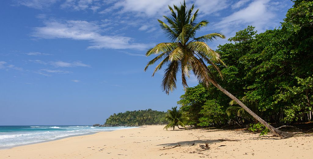 Sur la côte nord de Punta Cana
