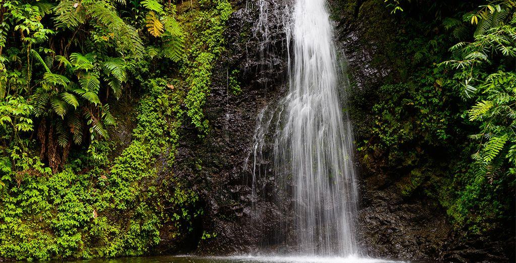 Photographie de la cascade aux écrevisses
