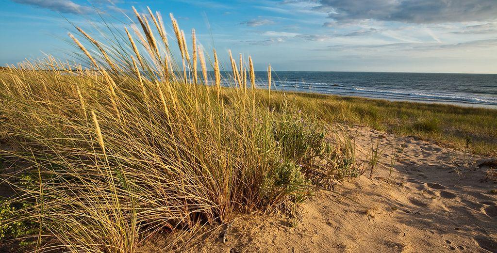 Plage de sable fin et vue sur la mer