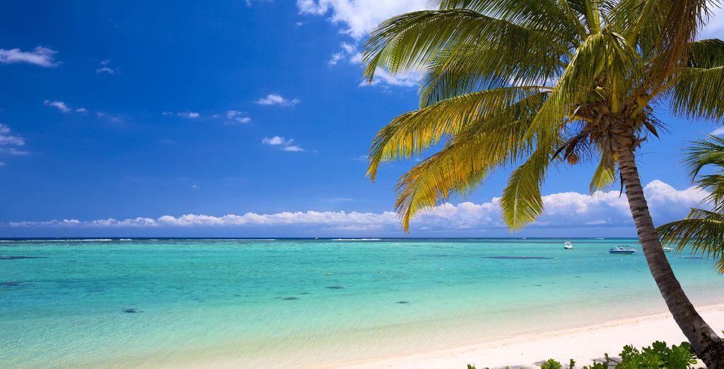 Plage de sable fin de Mayotte et eaux turquoise avec vue sur l'océan