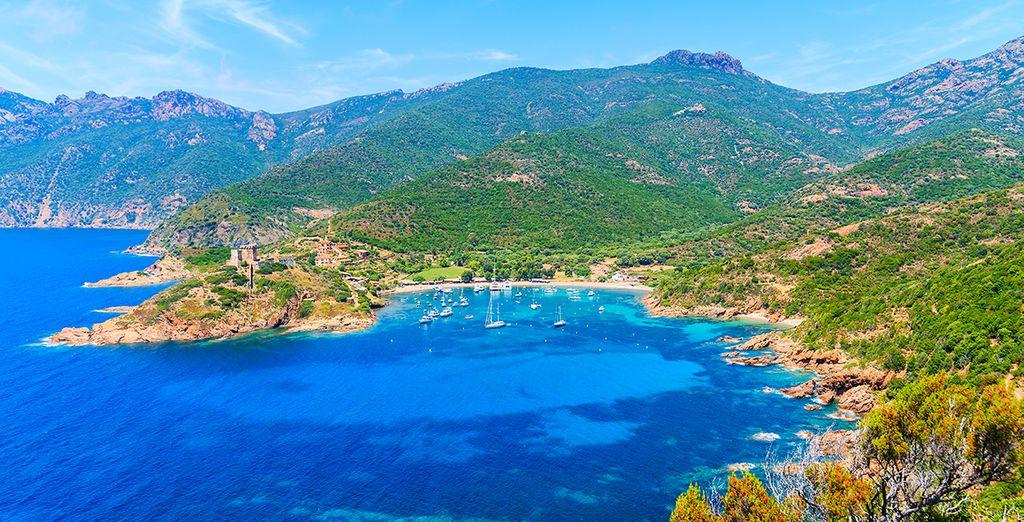 Paysage de Corse et montagnes verdoyantes
