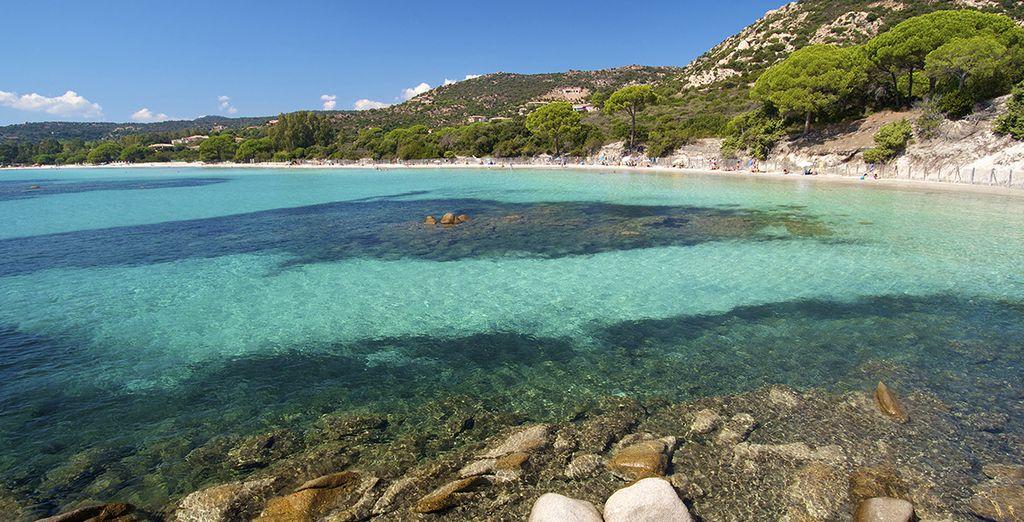 Plage paradisiaque de Corse et ses eaux turquoise
