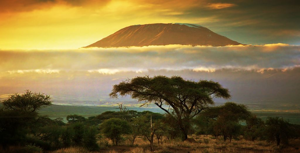 Circuit Couleurs de Tanzanie et extension possible à Zanzibar