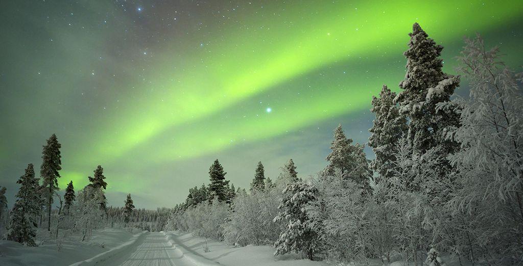 Observer les aurores boréales après une journée de Ski en Finlande
