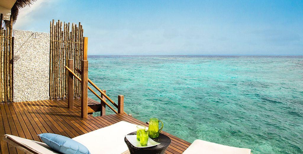 Envie d'une pause paradisiaque ?
