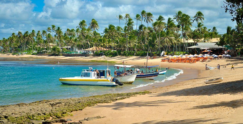 Avant de partir pour quelques jours de farniente à Praia do forte...
