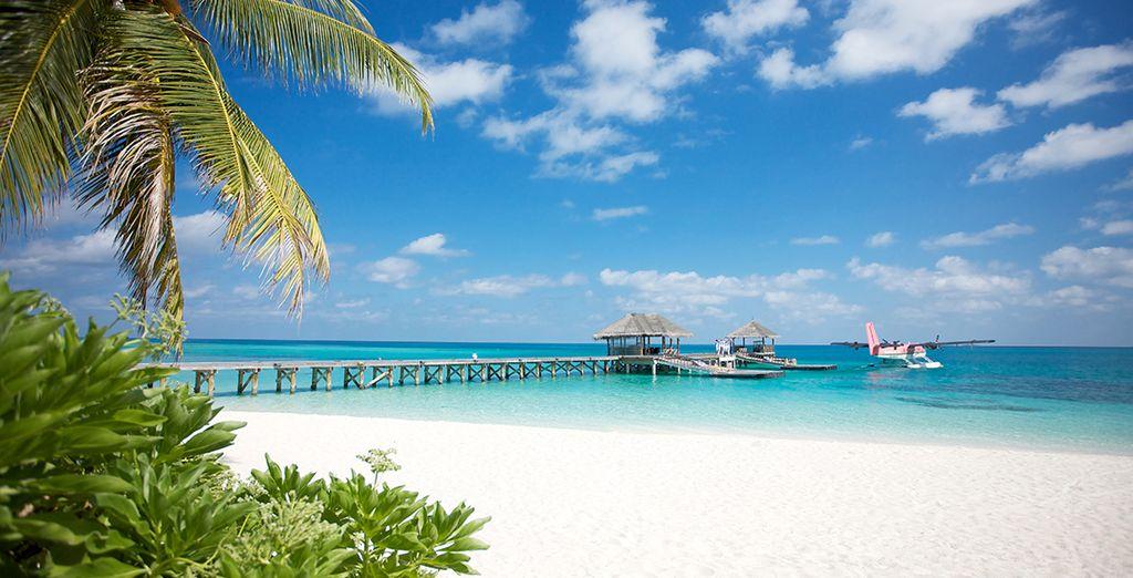 Véritable bijou posé sur les eaux cristallines - LUX* Maldives 5* - Vol en classe Affaires Emirates Ari Atoll