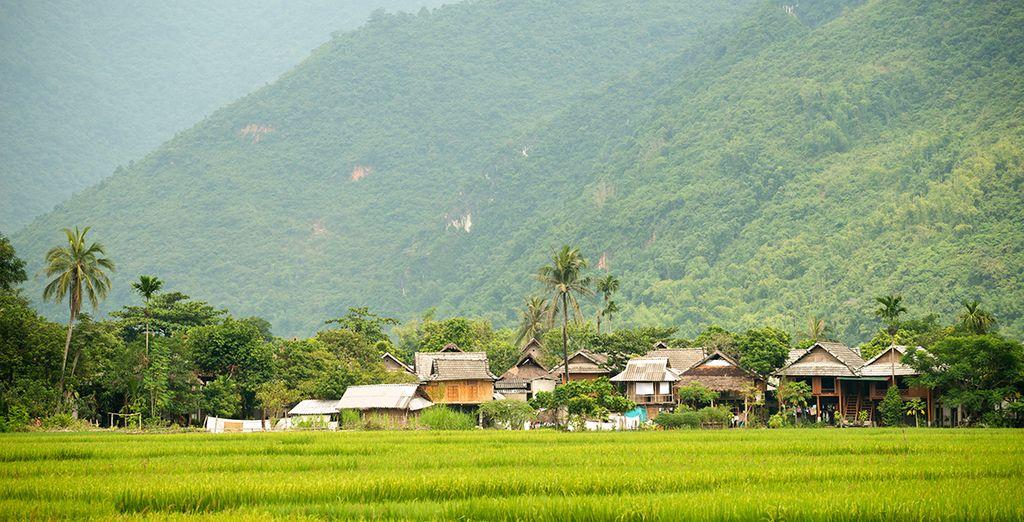 Puis dans la Vallée de Mai Chau avec ses rizières tellement bucoliques !