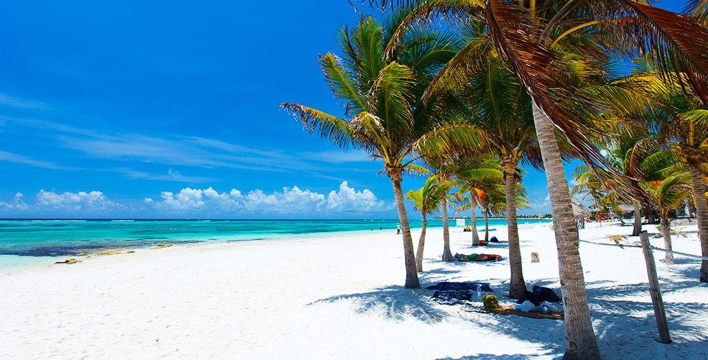 Pour une fin de séjour encore plus magique, craquez pour notre offre avec extension au Mexique