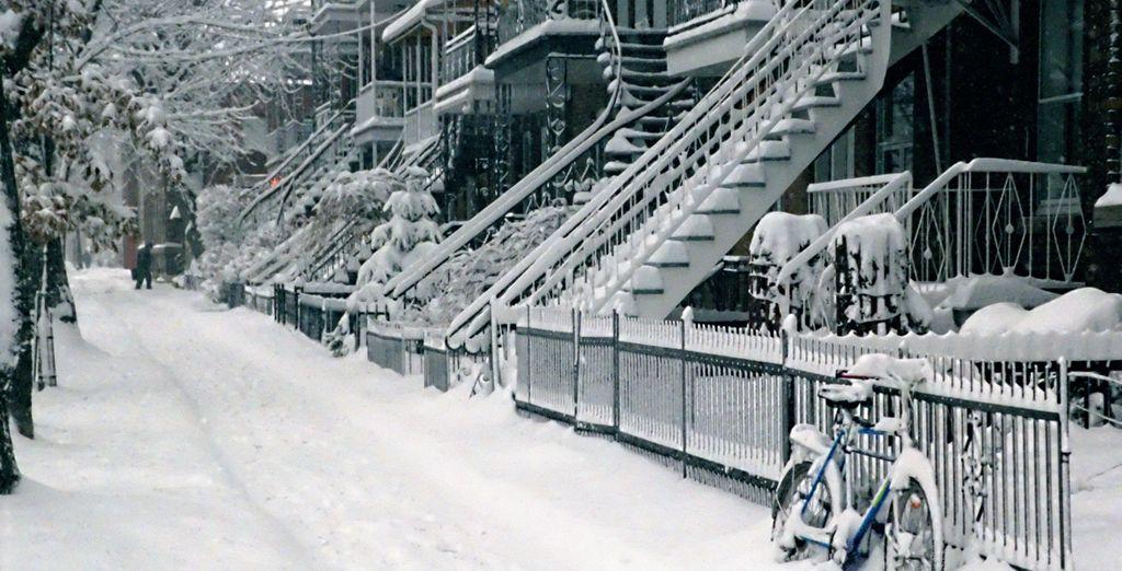 Rejoignez les rues enneigées de Montréal - Circuit