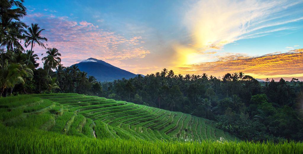Furama Villas 4*, Lembongan 4* et Nusa Dua 5*