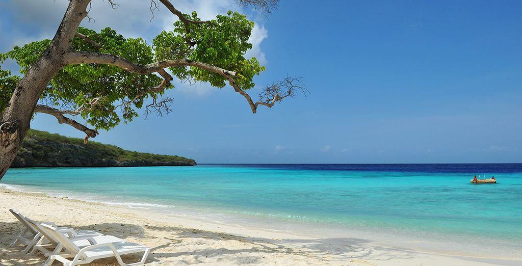 Dreams Curaçao 5*