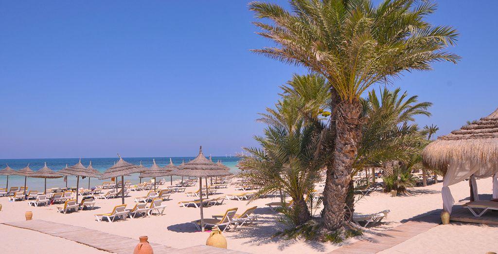 Bienvenue au One Resort Djerba Golf & Spa