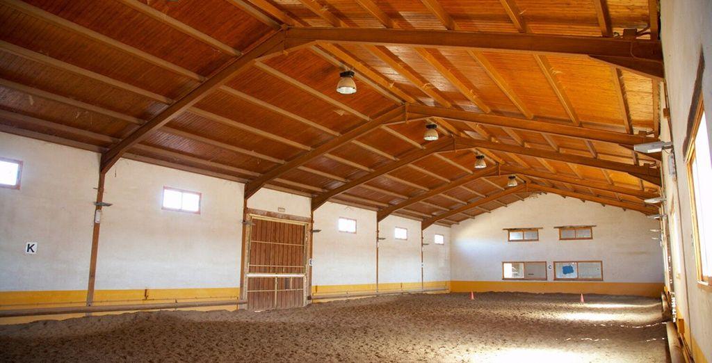 Participez aux classes d'équitation...