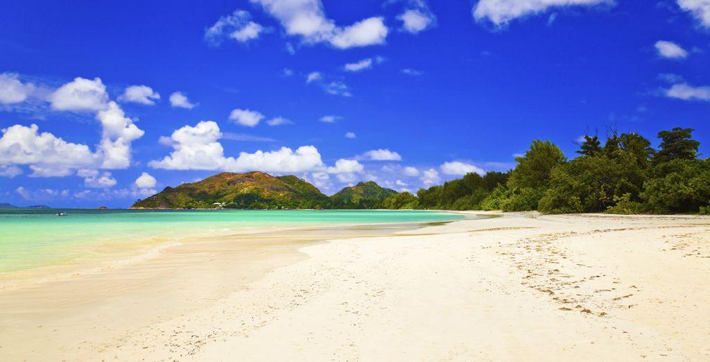 Laissez-vous enchanter par la splendeur des Seychelles