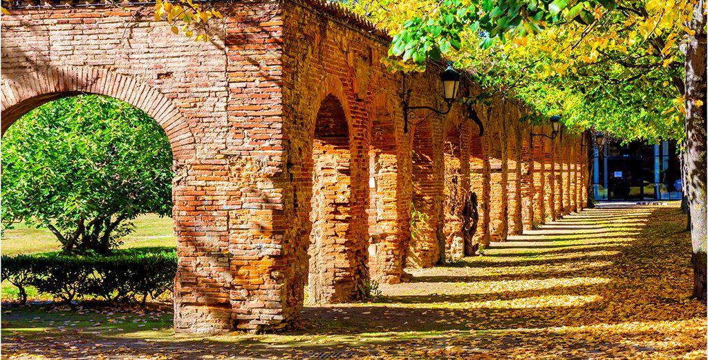Photographie des parcs verdoyant de la ville de Toulouse en France
